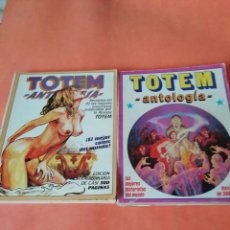 Cómics: TOTEM ANTOLOGIA. VOLUMEN 8 Y 9 . EDITORIAL NEW COMIC. NUMEROS 48 AL 53.. Lote 170968554
