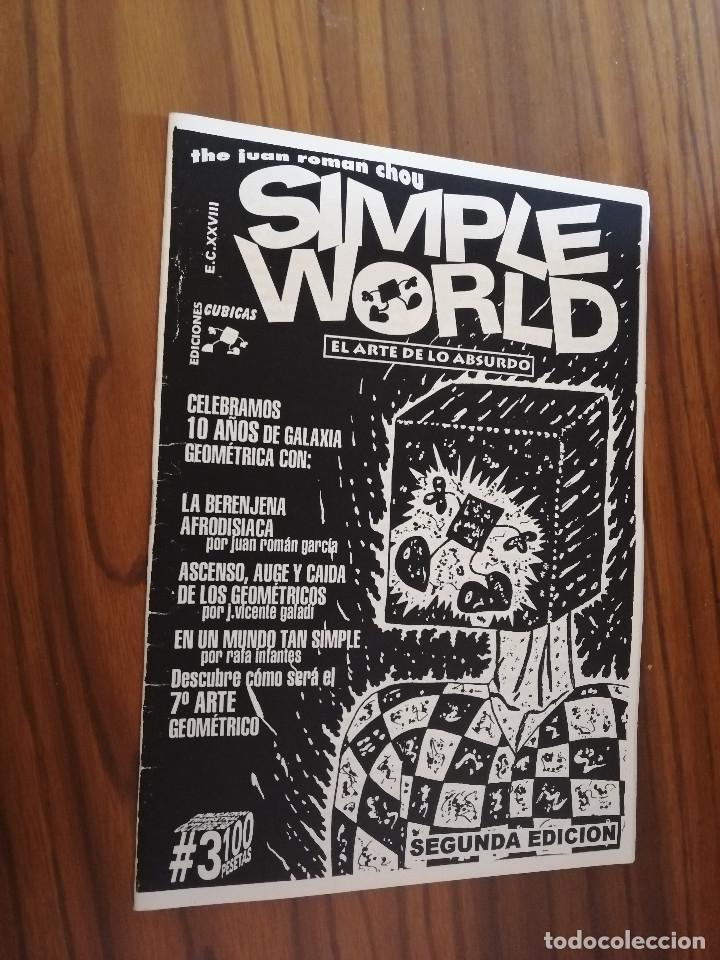 SIMPLE WORLD 3. REVISTA AUTOPUBLICADA. GRAPA. BUEN ESTADO. RARA (Tebeos y Comics - Comics otras Editoriales Actuales)