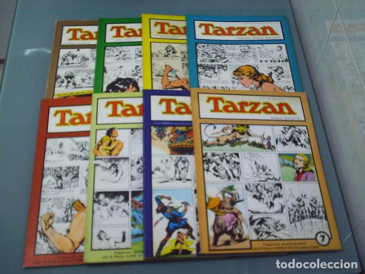 TARZÁN. 8 TOMOS. DEL 0 AL 7. ESTEVE. (Tebeos y Comics - Comics otras Editoriales Actuales)