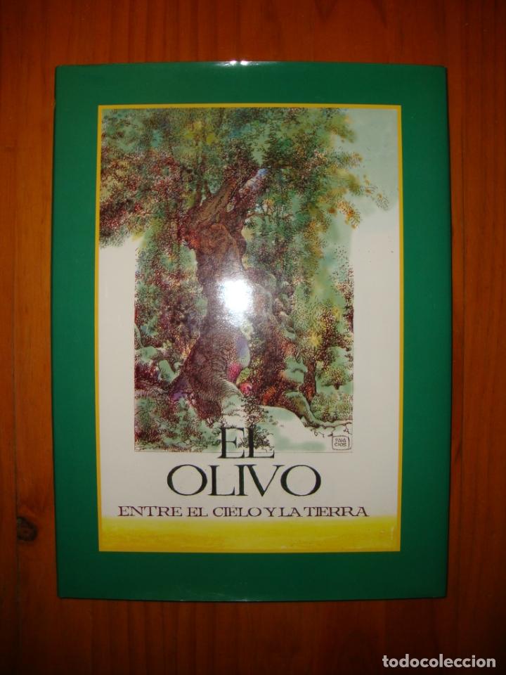 EL OLIVO. ENTRE EL CIELO Y LA TIERRA - A. HERNÁNDEZ PALACIOS (ILUST.) - MUY BUEN ESTADO (Tebeos y Comics Pendientes de Clasificar)