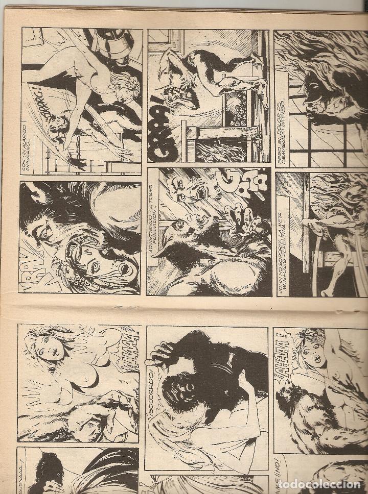 Cómics: HORROR - Nº 20 - PRIMERA EDICION - RELATOS PARA ADULTOS - COMIC EROTICO - ED ZINCO S.A - - Foto 3 - 194529043
