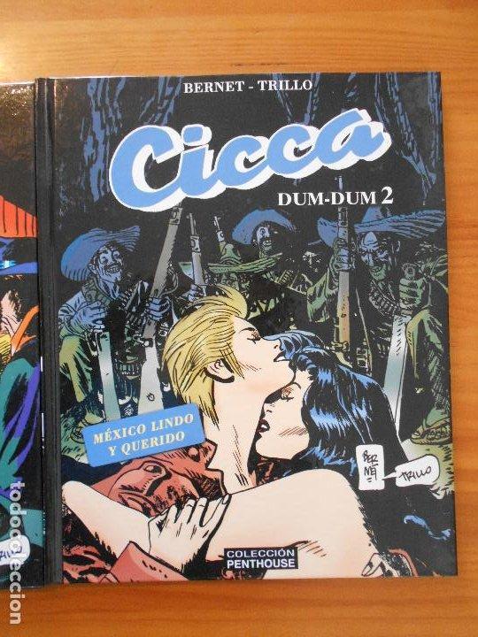 Cómics: CICCA DUM-DUM - Nº 1 Y 2 - BERNET / TRILLO - TAPA DURA - COLECCION PENTHOUSE (HJ) - Foto 3 - 194768533