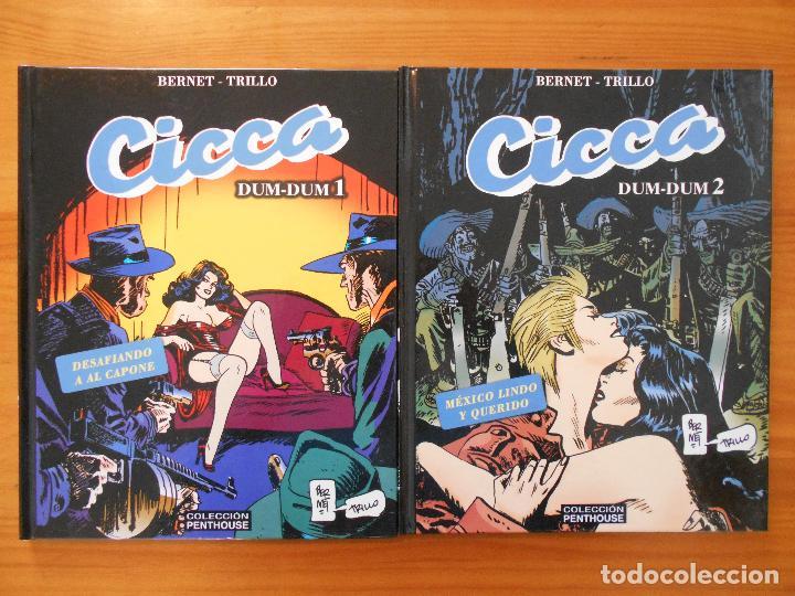 CICCA DUM-DUM - Nº 1 Y 2 - BERNET / TRILLO - TAPA DURA - COLECCION PENTHOUSE (HJ) (Tebeos y Comics - Comics otras Editoriales Actuales)