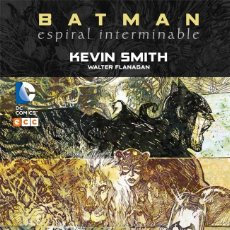 Cómics: BATMAN : ESPIRAL INTERMINABLE - ECC / DC / TAPA DURA. Lote 204661085