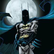Cómics: BATMAN : JUSTICIA CIEGA - ECC / DC / TAPA DURA. Lote 204748631