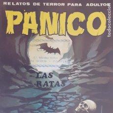 Cómics: PÁNICO Nº SIN NÚMERO. RELATOS DE TERROR. LAS RATAS. VILMAR 1981. Lote 218908178