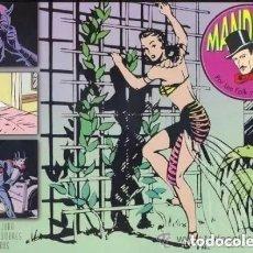 Cómics: MANDRAKE Nº 15 - IMPECABLE - EL BOLETIN - IMPECABLE. Lote 277085338