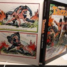 Cómics: FANTASTICO LIBRO COMIC ; TARZAN DE LOS MONOS ( DIBUJOS ORIGINALES DE BURNE HOGARTH ). Lote 288481428