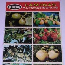 Coleccionismo Cromos antiguos: LAMINAS AUTOADHESIVAS * DIDEC * PRIMERA SERIE. Nº 15 FRUTAS. Lote 29427520