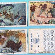 Coleccionismo Cromos antiguos: LOTE DE CROMOS. CROMOS SUELTOS; 0,60 €. AMATLLER. GRANDES CACERÍAS POR SEGRELLES. CHOCOLATES.. Lote 44664196