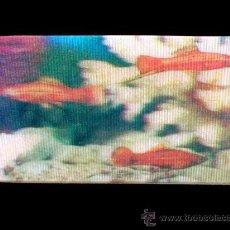 Coleccionismo Cromos antiguos: PORTADOR ESPADA CROMO Nº 41 ALBUM EL MUNDO DE LOS ANIMALES EN 3 DIMENSIONES, PANRICO 1975. SIN PEGAR. Lote 178072580
