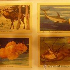 Coleccionismo Cromos antiguos: LOTE 4 CROMOS CELTA* *. Lote 33146741