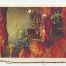 Coleccionismo Cromos antiguos: CROMO - LOS AURONES - Nº 149 - MULTILIBRO - 1987. Lote 36403363