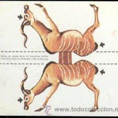 Coleccionismo Cromos antiguos: CROMO RECORTABLE EN CARTULINA DE UNA GACELA DE DAKTARI DE FHER. Lote 36408253