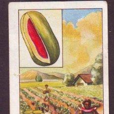 Coleccionismo Cromos antiguos: NESTLE.AÑO 1933.CURIOSIDADES DEL UNIVERSO.SERIE NR.9.CROMO NR.4.FRUTAS TROPICALES.. Lote 39960090