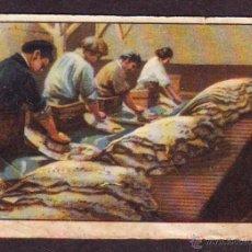 Coleccionismo Cromos antiguos: CROMO Nº 7,SERIE 20,PRIMER ALBUM GALLINA BLANCA,AÑOS 1940.PESCA DEL BACALAO Y DE LA SARDINA.. Lote 39960894