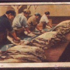 Coleccionismo Cromos antiguos: CROMO Nº 7,SERIE 20,PRIMER ALBUM GALLINA BLANCA,AÑOS 1940.PESCA DEL BACALAO Y DE LA SARDINA.. Lote 39961021