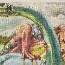 Coleccionismo Cromos antiguos: CROMOS HISTORIA NATURAL 0,15 € UNIDAD. Lote 43299425