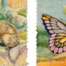 Coleccionismo Cromos antiguos: ANIMALES Y PLANTAS MARINAS DE FHER 200 CROMOS SE VENDEN SUELTOS. Lote 209956383