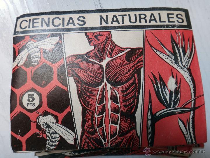 LOTE DE 50 SOBRES DE CROMOS , CIENCIAS NATURALES ,ORIGINALES ,RB (Coleccionismo - Cromos y Álbumes - Cromos Antiguos)