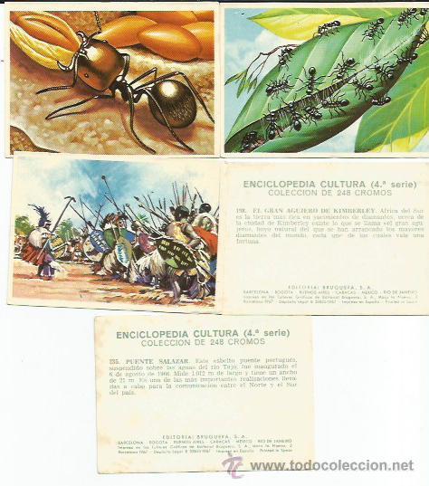 ENCICLOPEDIA CULTURA, 4ª SERIE - 17 CROMOS- TAMBIEN SUELTOS (Coleccionismo - Cromos y Álbumes - Cromos Antiguos)