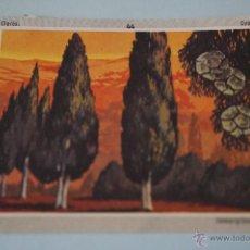 Coleccionismo Cromos antiguos: CROMO DE:VIDA Y COLOR 3,(DESPEGADO),Nº44,AÑO 1970,DEL ALBUM,VIDA Y COLOR 3,DE ALES. Lote 246242865