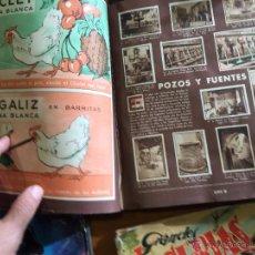 Coleccionismo Cromos antiguos: GALLINA BLANCA 2 ALBUM 900 CROMOS SE VENDEN SUELTOS NUEVOS Y USADOS. Lote 52378430
