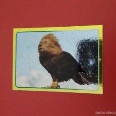 Coleccionismo Cromos antiguos: CROMO EL GRAN ALBUM DEL MUNDO ANIMAL 2014,Nº 203. Lote 171268238