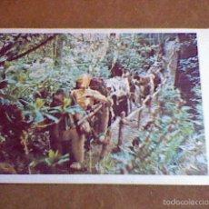 Coleccionismo Cromos antiguos: CROMO RECUPERADO STAR WARS RETORNO JEDI ED PACOSA DOS Nº 136. Lote 56618833