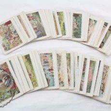 Coleccionismo Cromos antiguos: COLECCIÓN COMPLETA DE 100 CROMOS CRISTÓBAL COLÓN. DESCUBRIDOR DEL NUEVO MUNDO - CHOCOLATE JUNCOSA. Lote 58509418