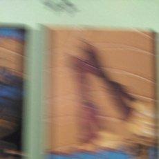 Coleccionismo Cromos antiguos: MONSTER HIGH PANINI 47. Lote 60148259