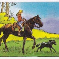 Coleccionismo Cromos antiguos: CROMO LOS RECORDS. Nº 27 (ROS). EL CABALLO MAS GRANDE Y MAS PEQUEÑO. BROOKLYN SUPREME.LITTLE PUMPKIN. Lote 68527233