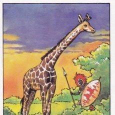 Coleccionismo Cromos antiguos: CROMO LOS RECORDS (ROS). Nº 31. EL ANIMAL MAS ALTO. JIRAFA ZOO CHESTER. Lote 68527469
