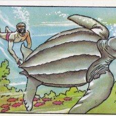 Coleccionismo Cromos antiguos: CROMO LOS RECORDS (ROS). Nº 46. LA TORTUGA MAYOR. TORTUGA DEL PACIFICO, DE DORSO DE CUERO. Lote 68527689