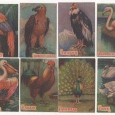Coleccionismo Cromos antiguos: (ALB-TC-7) COLECCION COMPLETA DE CROMOS DE LECHE SIL TEMATICA VARIADA 12 SERIES VER FOTOS. Lote 79820641