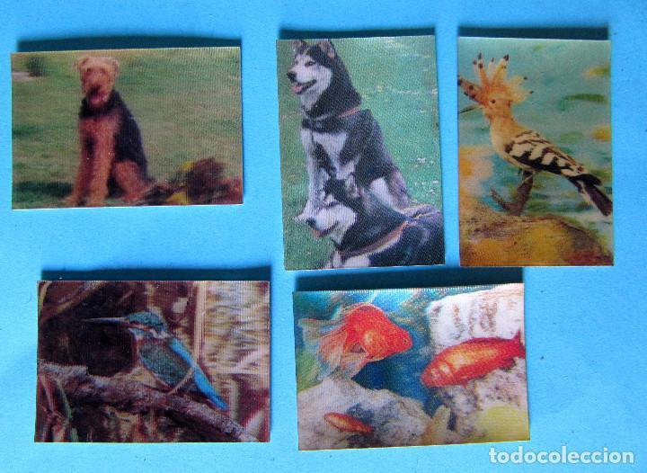 LOTE DE CROMOS. CROMOS SUELTOS; 1,20 €. EL MUNDO DE LOS ANIMALES EN 3 DIMENSIONES. PANRICO, 1975. (Coleccionismo - Cromos y Álbumes - Cromos Antiguos)