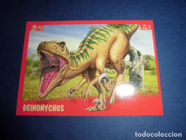 Butch del bushwackers #119 Wwf Lucha Libre 1991 tarjeta de comercio C242
