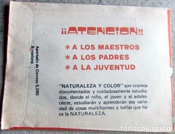 Coleccionismo Cromos antiguos: NATURALEZA Y COLOR LOTE DE 10 SOBRES ANTIGUOS SIN ABRIR 1980 - Foto 2 - 132787118