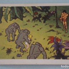 Coleccionismo Cromos antiguos: CROMO DE TARZAN DESPEGADO Nº 4 AÑO 1979 DEL ÁLBUM TARZAN DE FHER . Lote 133088794