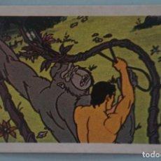 Coleccionismo Cromos antiguos: CROMO DE TARZAN DESPEGADO Nº 5 AÑO 1979 DEL ÁLBUM TARZAN DE FHER . Lote 133088846