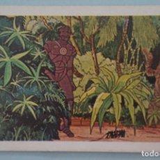 Coleccionismo Cromos antiguos: CROMO DE TARZAN DESPEGADO Nº 59 AÑO 1979 DEL ÁLBUM TARZAN DE FHER . Lote 133090934