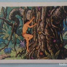 Coleccionismo Cromos antiguos: CROMO DE TARZAN DESPEGADO Nº 86 AÑO 1979 DEL ÁLBUM TARZAN DE FHER . Lote 133091810