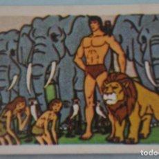 Coleccionismo Cromos antiguos: CROMO DE TARZAN DESPEGADO Nº 108 AÑO 1979 DEL ÁLBUM TARZAN DE FHER . Lote 156953257