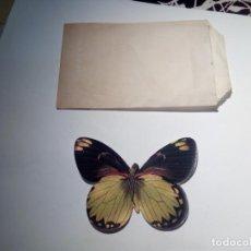Coleccionismo Cromos antiguos: CROMO PANRICO MARIPOSAS. Lote 136736438