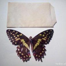Coleccionismo Cromos antiguos: CROMO PANRICO MARIPOSAS. Lote 136739742