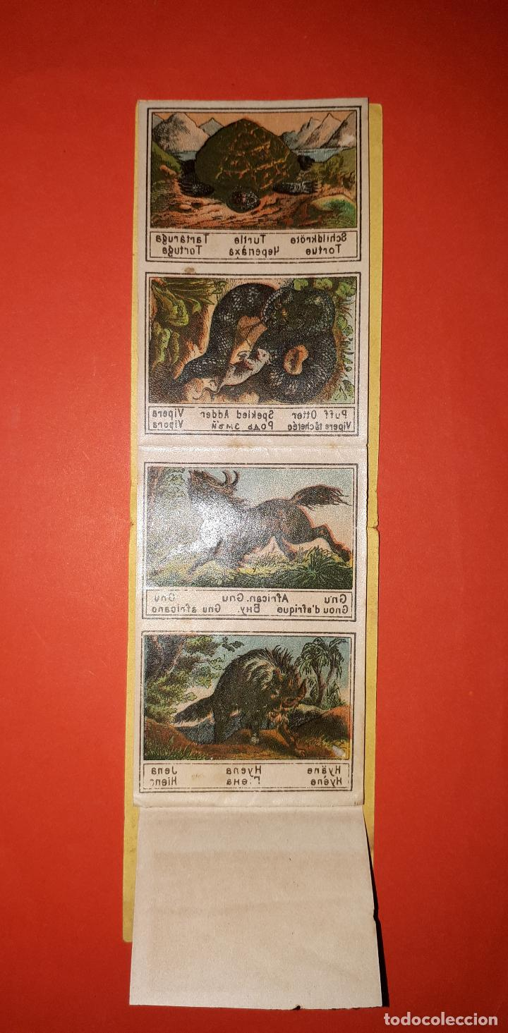 Coleccionismo Cromos antiguos: ANTIGUO ALBUM DE CALCOMANÍAS SIGLO XIX - Foto 3 - 138905342