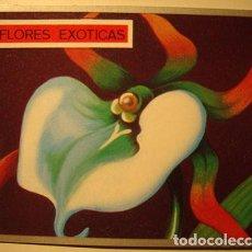 Coleccionismo Cromos antiguos: CROMO ALBUM ZOOLOGIA Y BOTANICA DE MAGA NUMERO 275 (NUEVO ). Lote 143112590