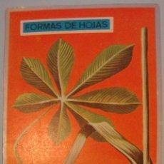 Coleccionismo Cromos antiguos: CROMO ALBUM ZOOLOGIA Y BOTANICA DE MAGA NUMERO 282 (NUEVO ). Lote 143112610