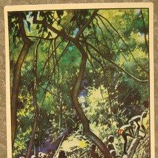 Coleccionismo Cromos antiguos: CROMO ALBUM Nº 2 A TRAVES DE AFRICA DE CHOCOLATES BATANGA SERIE VI NUMERO 1 (NUNCA PEGADO). Lote 143531390