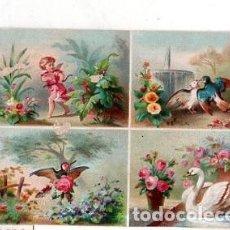 Coleccionismo Cromos antiguos: CROMO LITOGRAFICO. MEDIDAS : 9 X 13 CM APROX. VER FOTO.. Lote 152150854